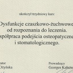 Marcin Dolecki certyfikaty 08